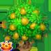 Vous cherchez un arbre ? Venez cliquer ici !!! Baeltr10
