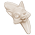 Loup des Apennins => Croc de Loup des Apennins Carved12