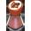 Giroflier  Clovep10