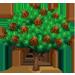 Vous cherchez un arbre ? Venez cliquer ici !!! Europe11