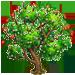 Vous cherchez un arbre ? Venez cliquer ici !!! Gojibe10