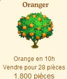 Oranger Sans_130