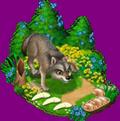 Loup des Apennins => Croc de Loup des Apennins Sans_497