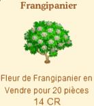 Frangipanier => Fleur de Frangipanier Sans_578