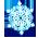 Merveille Hivernale [Décoration à collecte limitée] Snowfl19