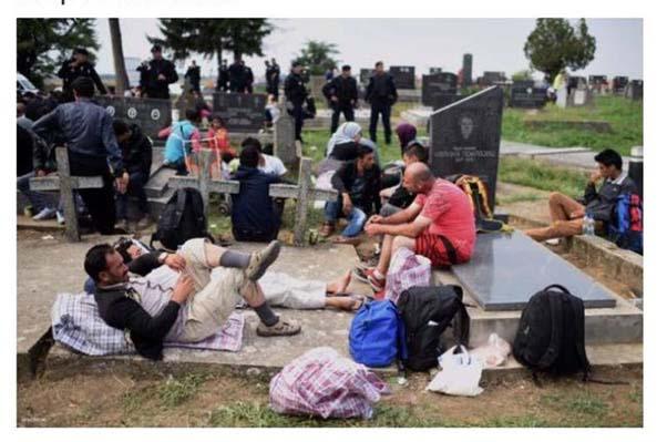 Arrêt de l'accueil des réfugiés et des migrants - Avant et après Cologne - Page 2 Cid_f612