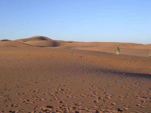 A Merzouga : Choix du camping et la bonne balade dans le desert - Page 2 73_au_10