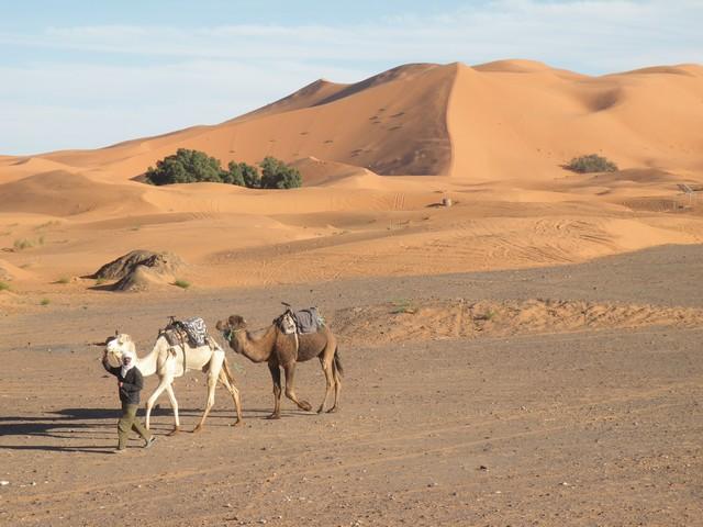 A Merzouga : Choix du camping et la bonne balade dans le desert Copie_29