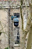 George Clooney agrees to tone down 'unsightly and intrusive' CCTV cameras outside his UK mansion G-ligh12