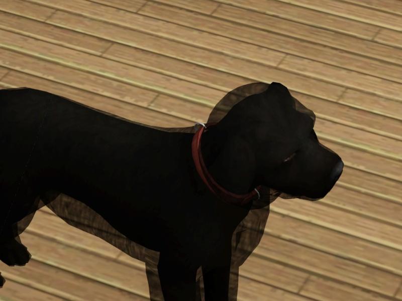 [R 1/02/2016]Sims 3 - Mes animaux sont tous pas beaux. Screen10