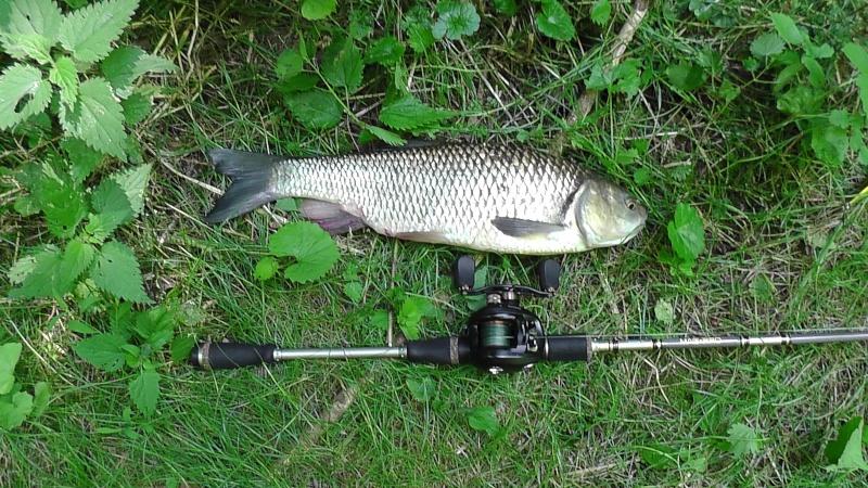 Présentation ED FISHING S1040010