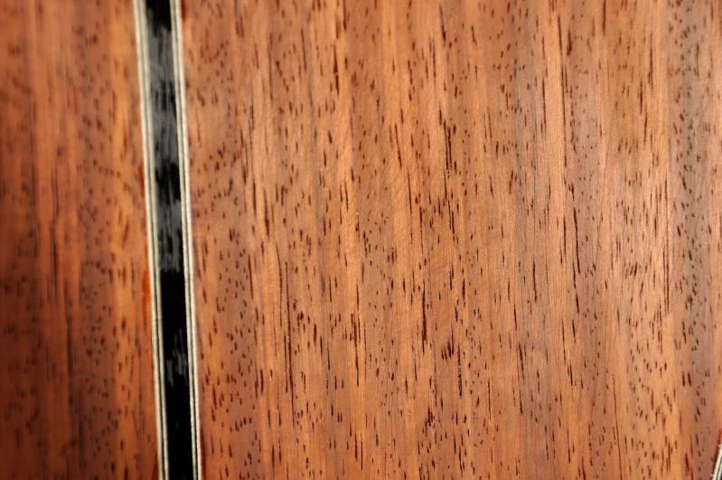 Construire sa guitare ... et plus si affinités avec le travail du bois - Page 2 _dsc0025