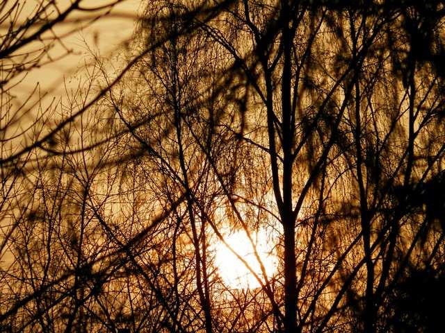 soleil d'hiver Couche11