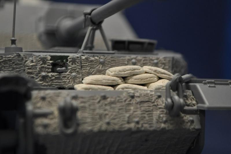 sdkfz - Sdkfz.184 elefant 1/35 italeri ref 211 Dsc_0048
