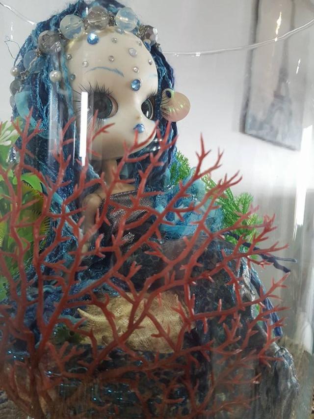 [dal custo]ecume de mer, nouvel aquarium p.3 - Page 3 12523110