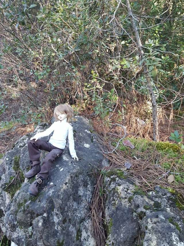 [cp msd chiwoo]Myrddin Wyllt; la jeunesse de Merlin... 12524111
