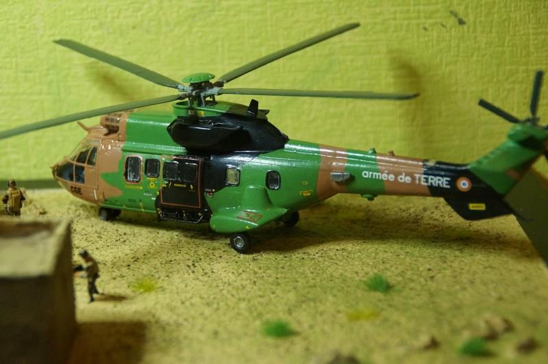 Opération PAMIR Réf 52319 Dsc06114