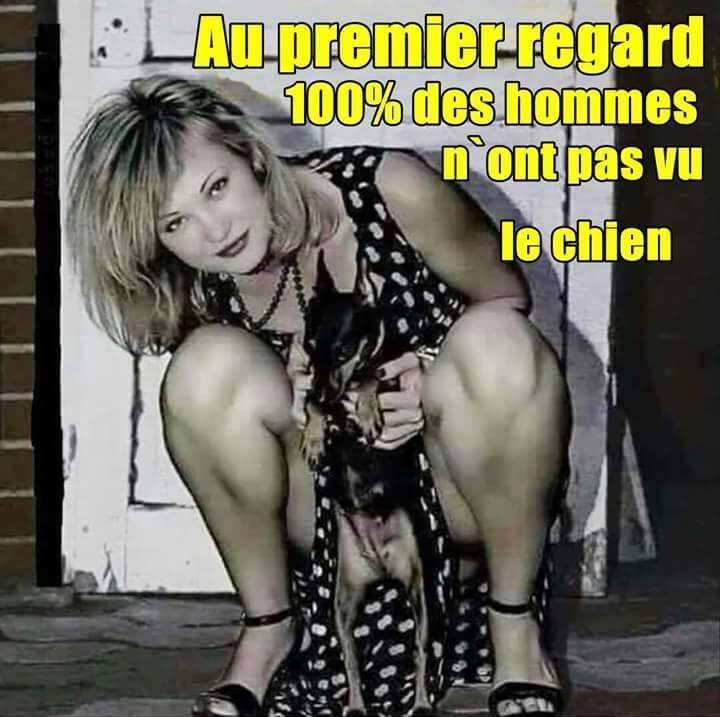 humour - Page 2 12063310