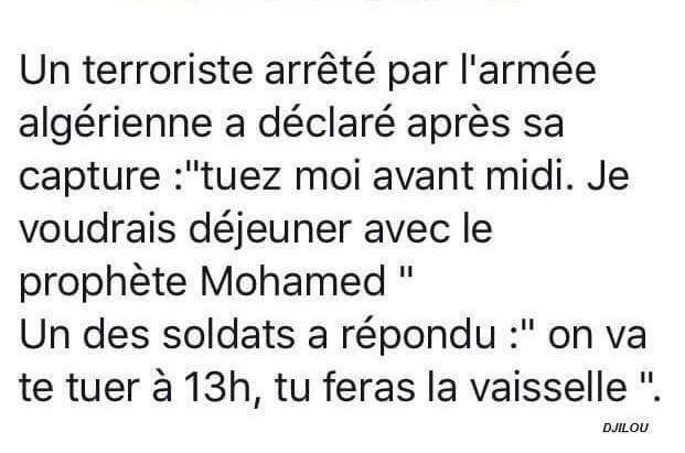 humour - Page 2 12241410