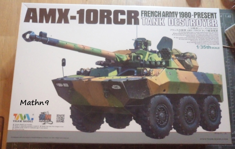 AMX 10RCR [Tiger model 1/35] + Ajouts Blast Model -Terminé- Dsc03517