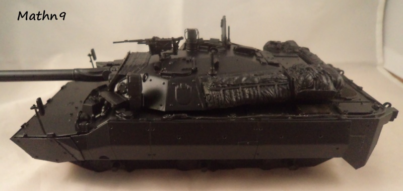 AMX 10RCR [Tiger model 1/35] + Ajouts Blast Model -Terminé- Dsc03612