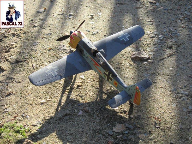 FW190 A5 au 1/48 de Dragon par pascal 72 Img_5411
