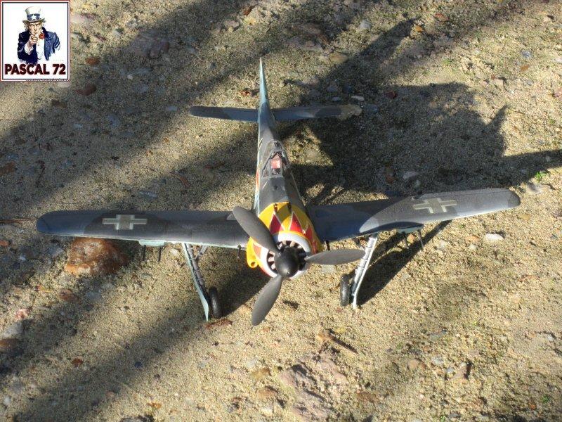 FW190 A5 au 1/48 de Dragon par pascal 72 Img_5416