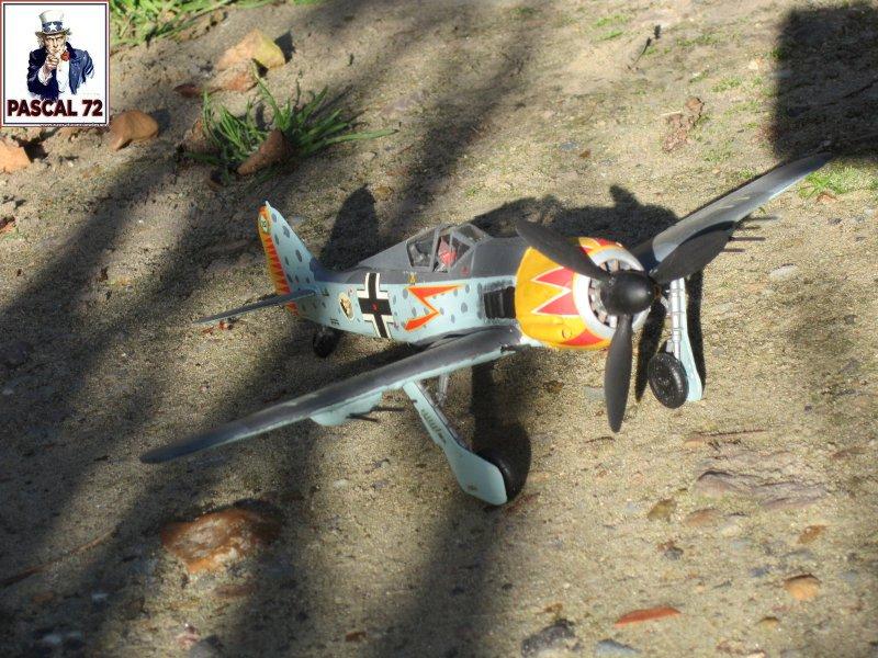 FW190 A5 au 1/48 de Dragon par pascal 72 Img_5418