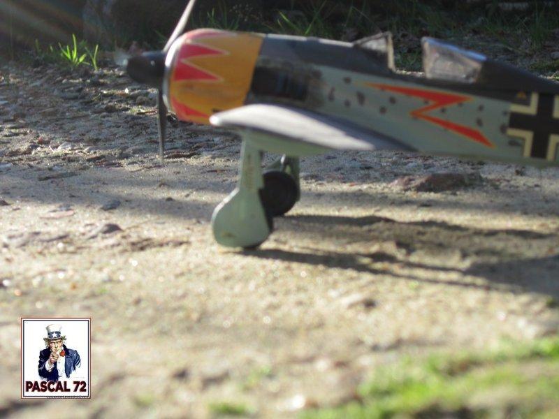 FW190 A5 au 1/48 de Dragon par pascal 72 Img_5422
