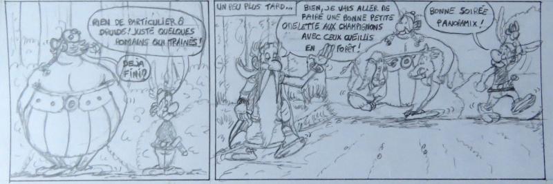 Le druide des montagnes (album) - Page 2 Img_2111