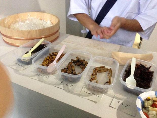 Qui a déjà mangé des insectes, chenilles ou autres éléments moins courants? - Page 3 Sushis10