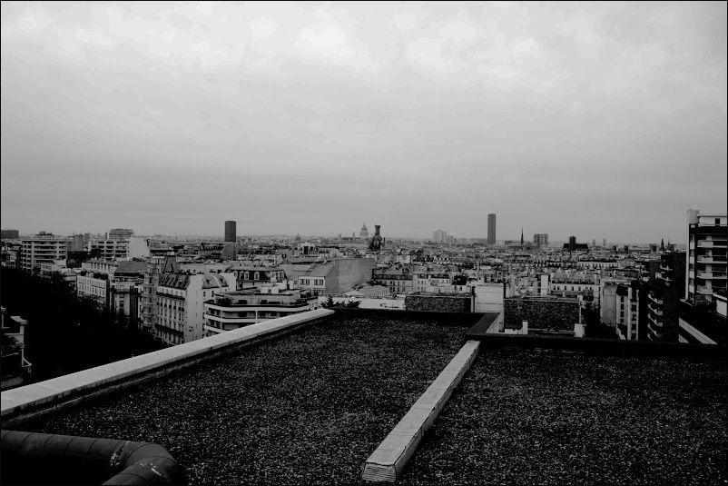 toit de Paris 111