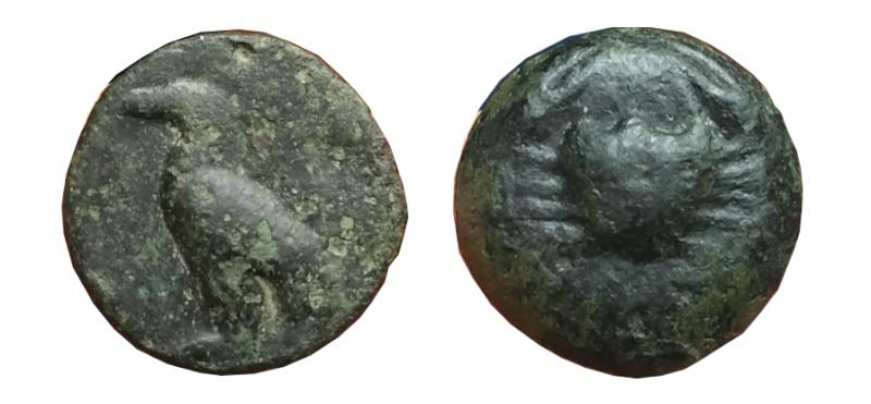 Les bronzes grecs de Brennos - Page 2 Akra110