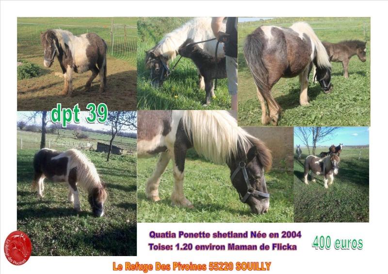 Quatia des Islots ponette  dep55 12374810