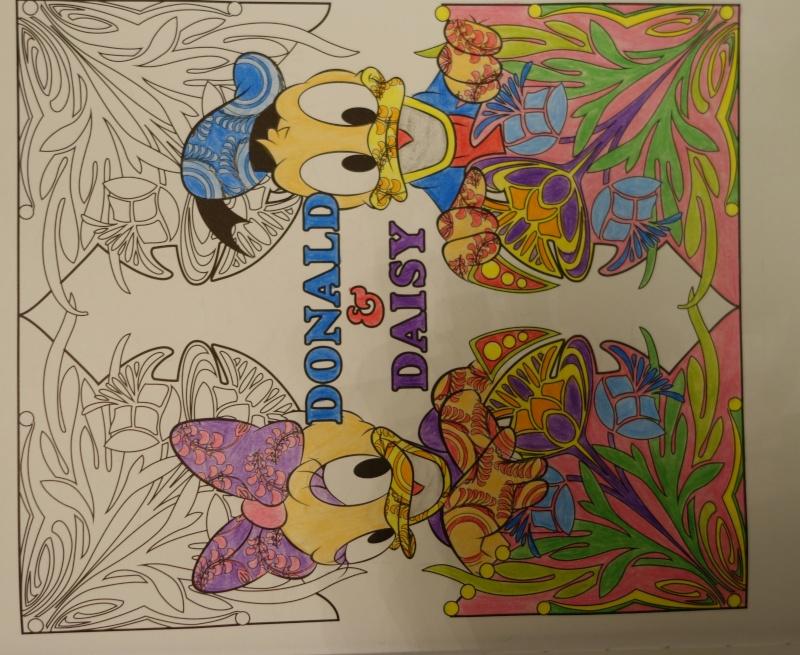 Les Coloriages Disney Dsc00714