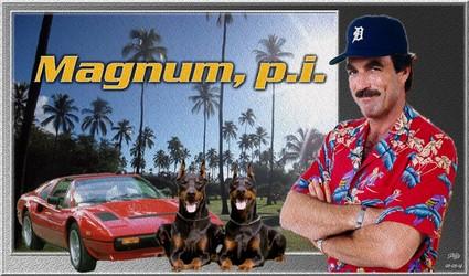 Magnum P.I Magnum10