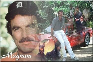 Magnum P.I Magnum12