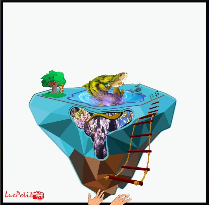 Mes interventions Facebook Aquari10