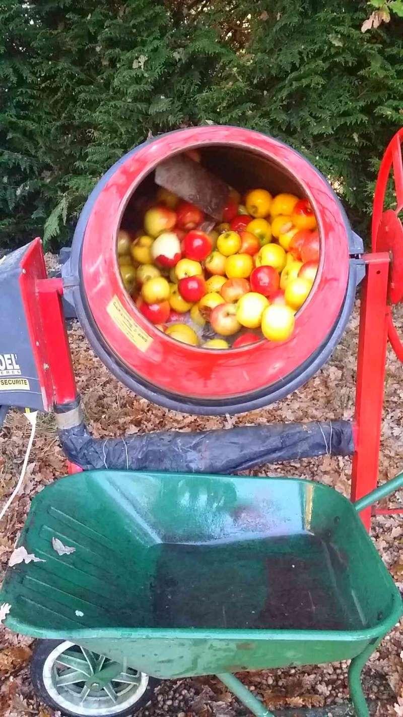 Pressoir, jus de pommes et cidre… 1110