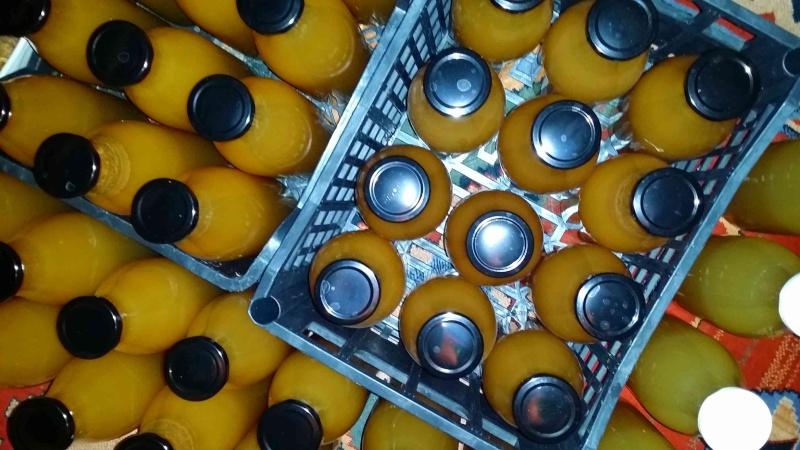 Pressoir, jus de pommes et cidre… 2610