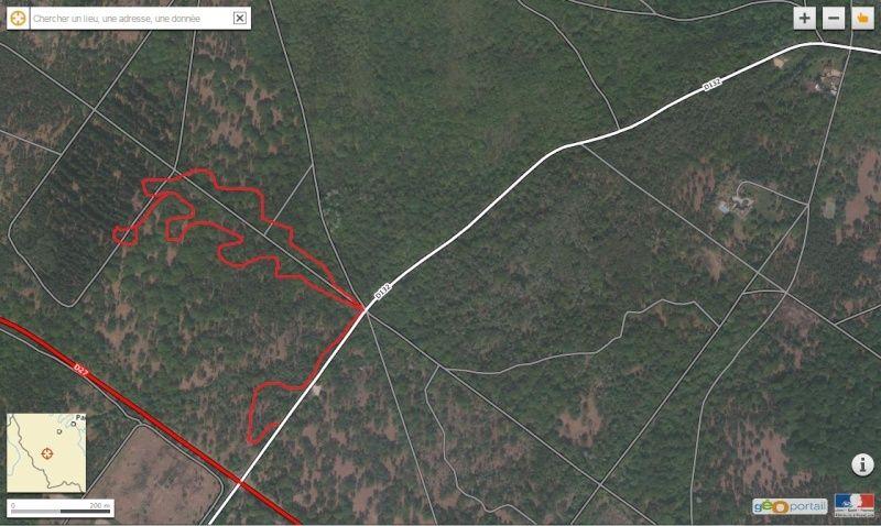 Forêt de Rambouillet: Le domaine de la Claye. Claye_10