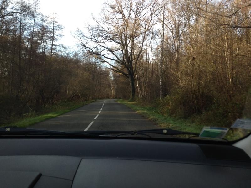 Forêt de Rambouillet: Le domaine de la Claye. Img_3825