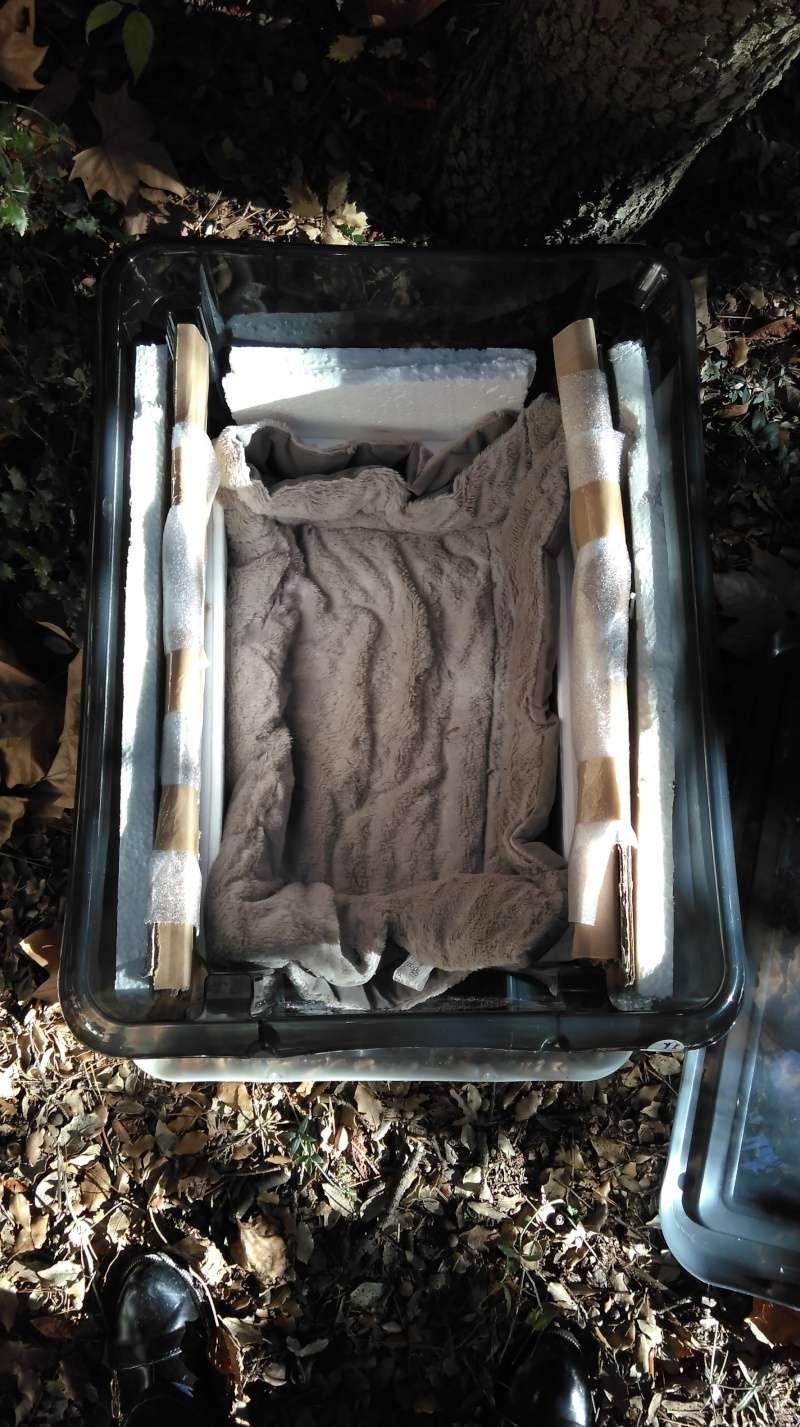 Créer un abri contre l'hiver pour les chats errants Imag0110