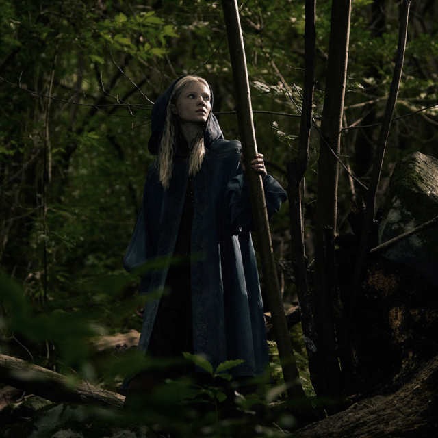 The Witcher - Netflix 15619916