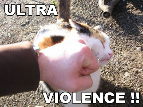 Because cats Ultra_10
