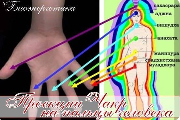 Проекции Чакр на пальцы человека Eeeeee22
