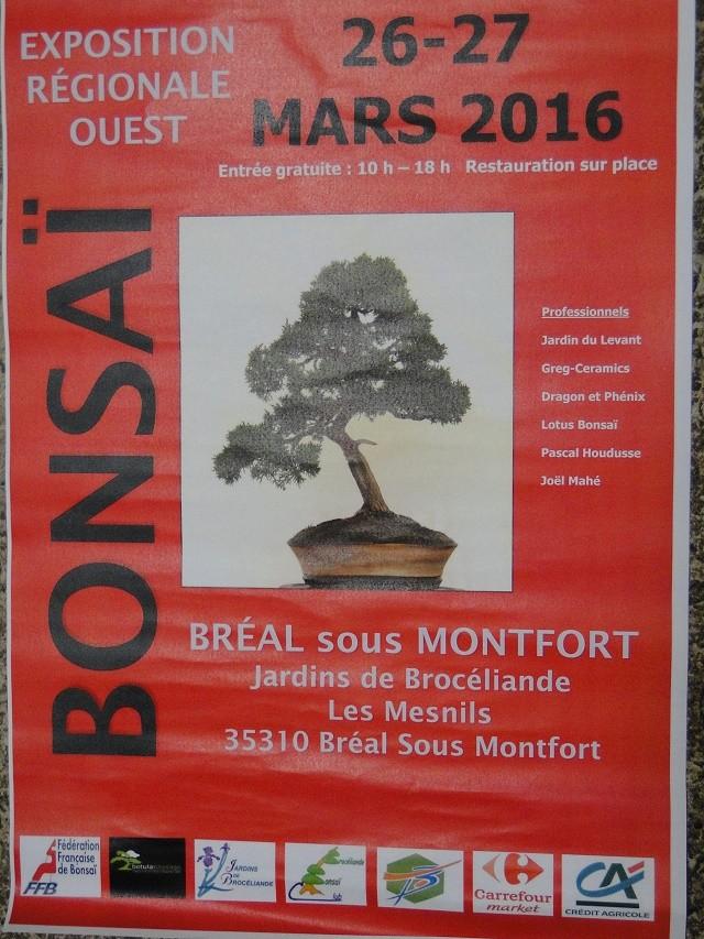 expo régional les 26 et 27 mars au jardin de Brocéliande ( 35 ) Dsc09111