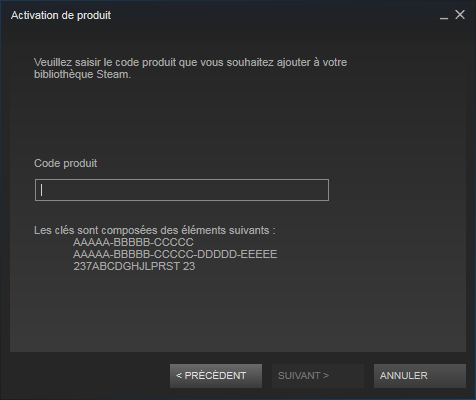 Problème DoW 2 Steam_12