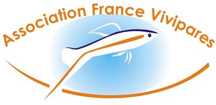 Forum de l'AFV