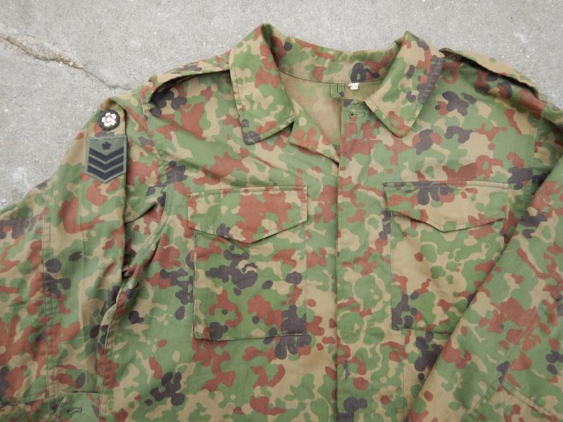"JGSDF  ""Jeitai ""  Dscn2914"